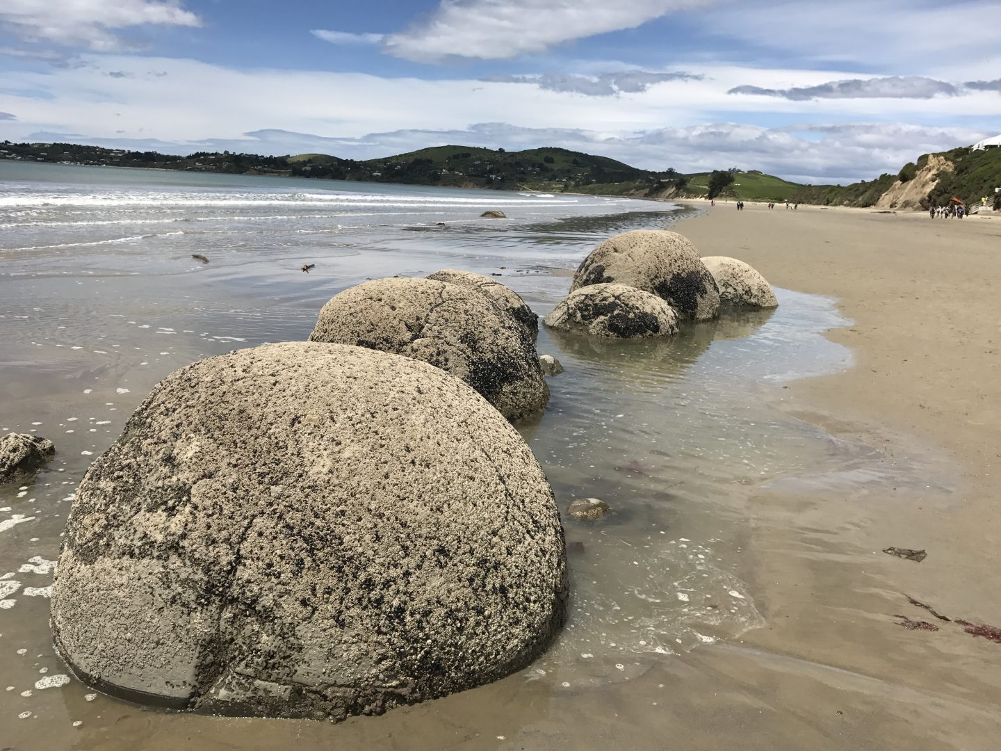 Moeraki Boulders, South Island, New Zealand
