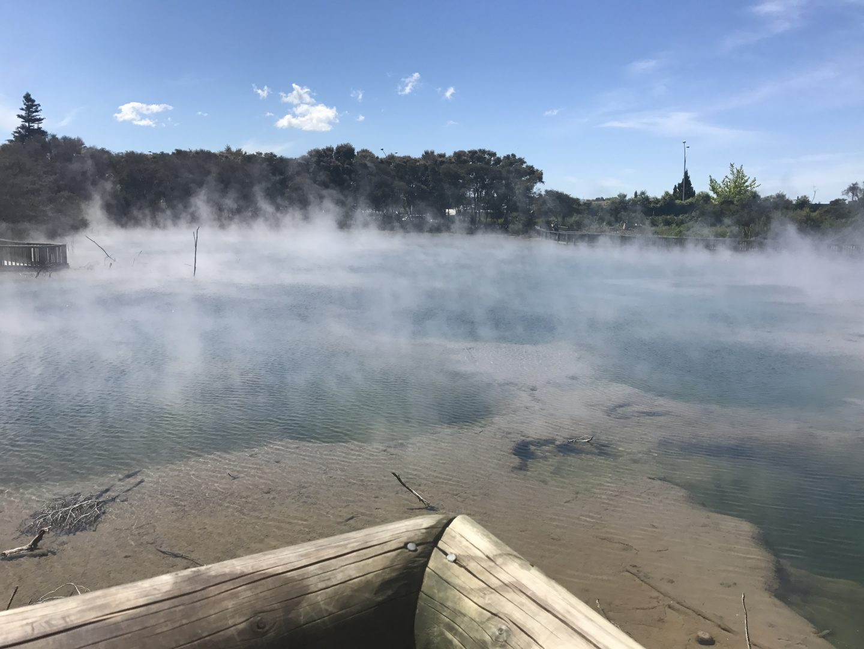 Thermal Springs, Kuirau Park, Rotorua