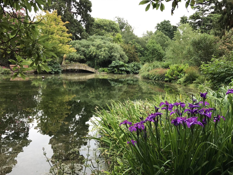 Christchurch Botanic Gardens Lake