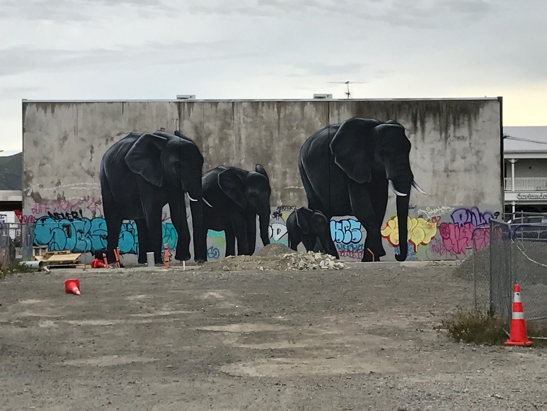 Three elephants grafitti in Christchurch, New Zealand